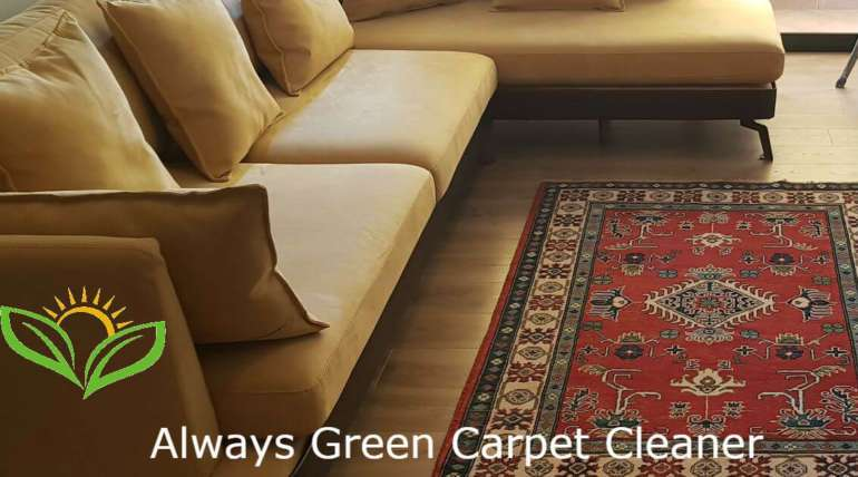 Rug cleaning nyc 7